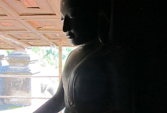 Meditation_Tai_Chi